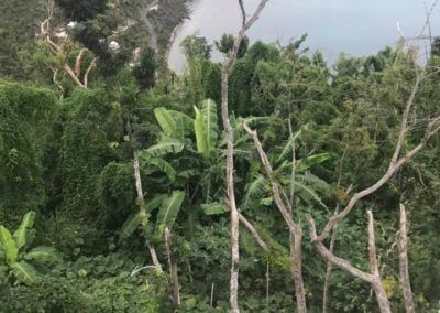 View of St John US Virgin Islands