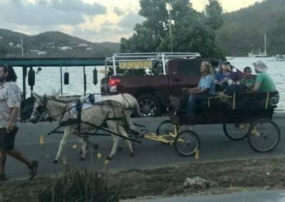 Carriage Ride St John US Virgin Islands